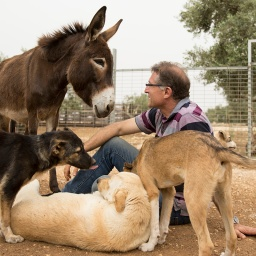 Film: Daily Hugz Animal Sanctuary