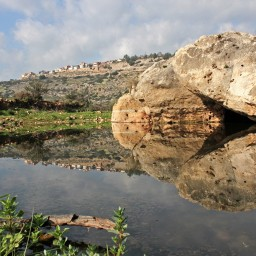 The theft of Wadi Qana
